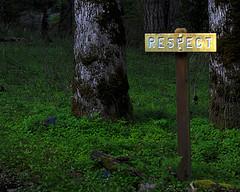 Respect 2459245450_cd6f201969_m