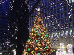 Christmas tree 310048508_84f87f613b_m