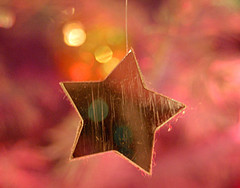 Gold star 2146359449_e947096bf3_m