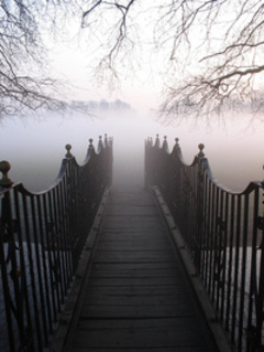 Fog_path_flickr_436176848_b0a500797