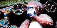 Monkey_148905239_e9dd59a747_m