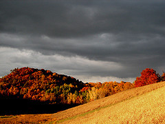 Wisconsin_hills_flickr_55827421_015