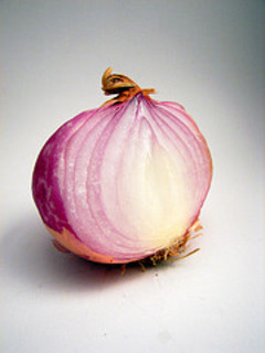 Onion_flickr_268335565_85939714cc_m