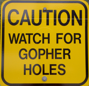Gopher_holes_sxc_643050_10383998